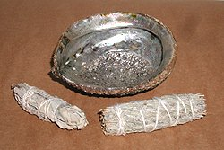 Abalone Shell for Native American Smudge Bowl
